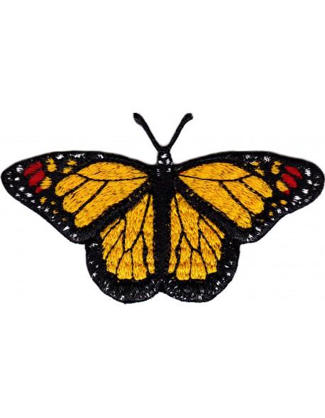 Motyl - monarcha