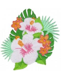 Kwiat tropikalny hibiskus